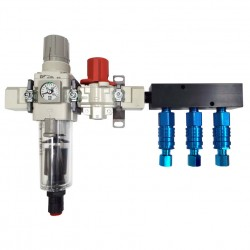 Alpha Filter/Regulator Manifold Systems